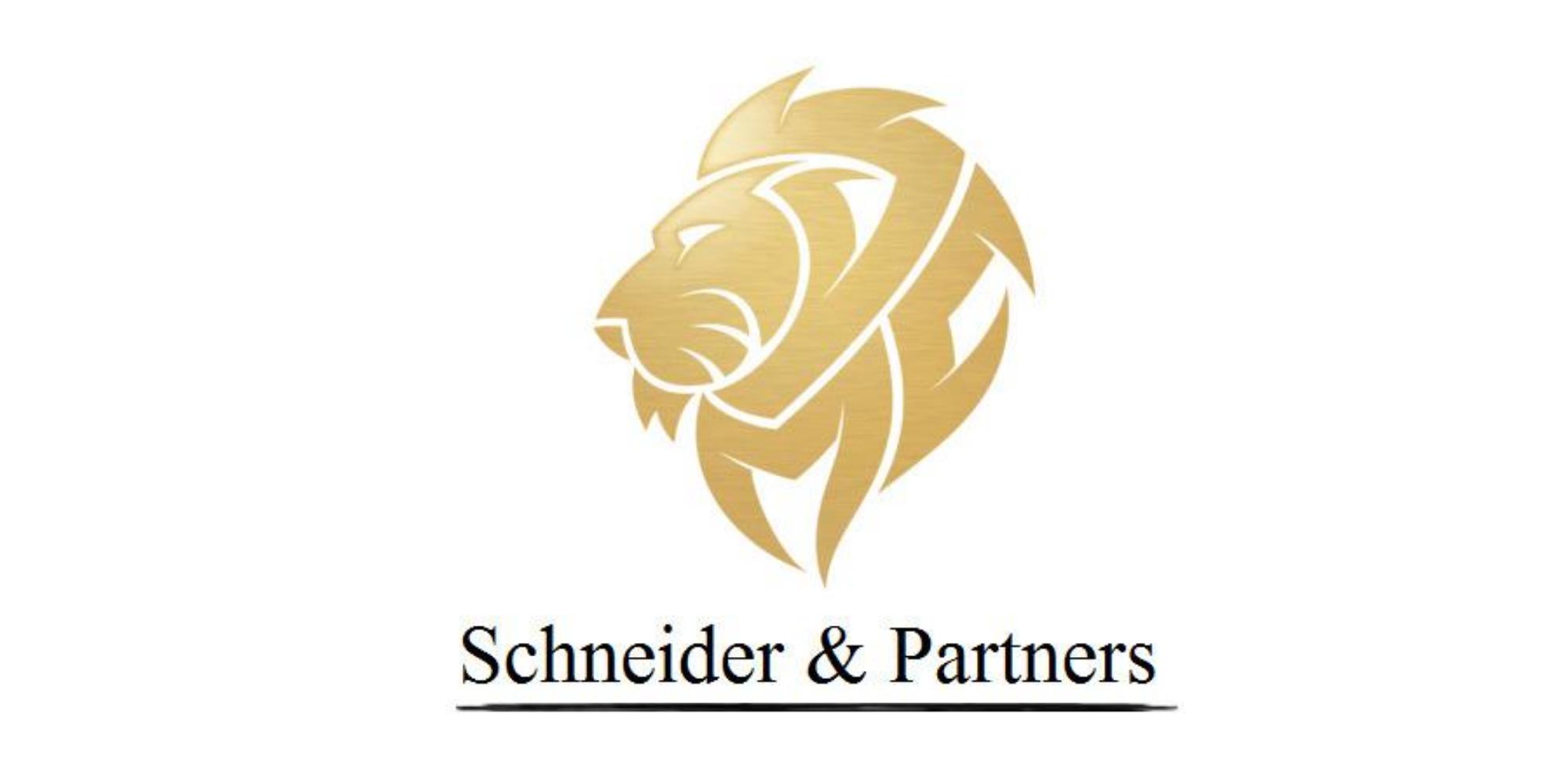 Schneider Financial Group